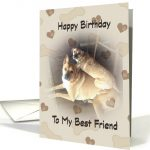 Two mixed breed dogs posing in a piggy back fashion.  The smaller brown dog is on top of the larger brown dog posing for the camera.  The background consists of hearts and bone treats.  The front of card reads Happy Birthday to my best friend.
